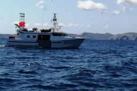 El Govern denuncia un palangrero que pescaba en aguas interiores de Baleares