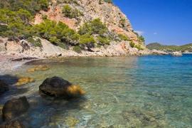 Una playa de Mallorca busca convertirse en la más limpia de España