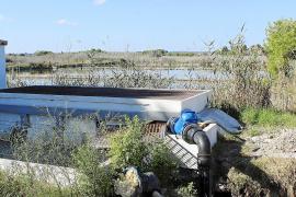 Abaqua señala que el agua que llega a Son Bosc triplica la salinidad permitida