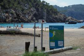 El control de acceso a Benirràs, en imágenes (Fotos: Marcelo Sastre).