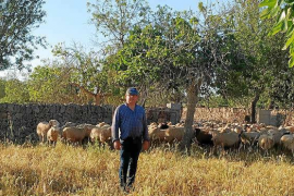 Antoni Mestre: «Es necesario reinventarse y recibir apoyo institucional»