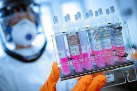 La UIB colaborará en la obtención de una vacuna contra la COVID-19