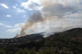 Controlado el incendio de Costa  d'en Blanes tras calcinarse una hectárea de pinar