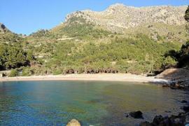¿Qué municipios de Mallorca han perdido residentes?