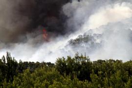 Incendio forestal en Son Caliu