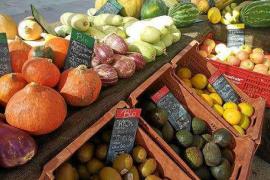 Agricultura ecológica en auge