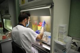 Datos del coronavirus en Baleares a 19 de junio