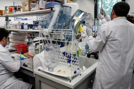 España se suma al acuerdo para que la UE sea quien compre las vacunas contra el coronavirus