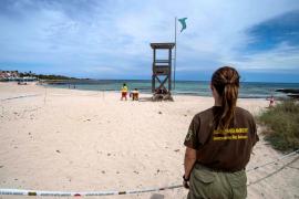 Desentierran 132 huevos de una tortuga marina en Punta Prima para protegerlos