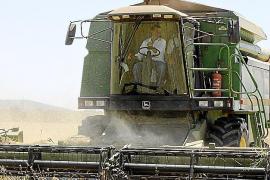 EL CONSELLER D'AGRICULTURA, GABRIEL COMPANY, VISITA UN CAMP DE CEREALS A CAMPOS