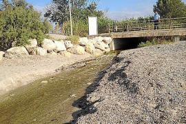 El vertido de agua depurada en sa Marjal no fue contaminante