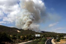 Extinguido el incendio forestal de nivel 0 de  Son Granada