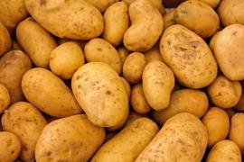 ¿Cómo afecta el almidón resistente de las patatas a la microbiota intestinal?