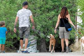 La nueva ordenanza de animales no impondrá ni tasas ni límite de mascotas