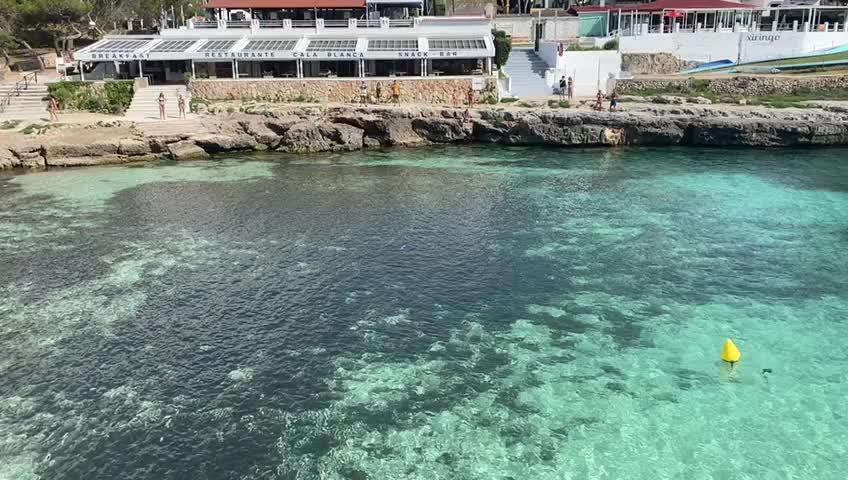 Avistan una aguja imperial de dos metros en Menorca