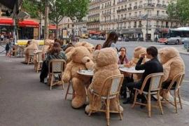 'Invasión' de osos de peluche en París