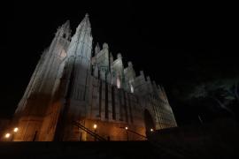 Visita guiada: descubre el mundo funerario de la Seu
