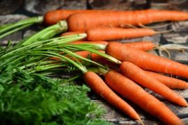 Las propiedades de la zanahoria