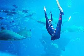 Los parques acuáticos de Mallorca abren a mediados de julio con un aforo del 50 %