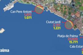 Cort recomienda reducir casi a la mitad la capacidad de las playas de Palma