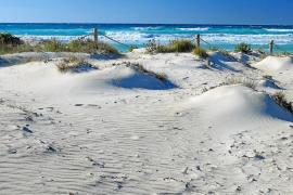 Escudos de arena contra el temporal