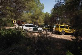 Dos detenidos por el incendio que calcinó una zona de pinada entre Cala Bassa y Cala Roja