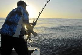 A la pesca del atún rojo