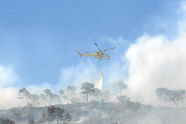 Extinguido otro incendio forestal en Calvià tras quemar 2.000 metros de terreno