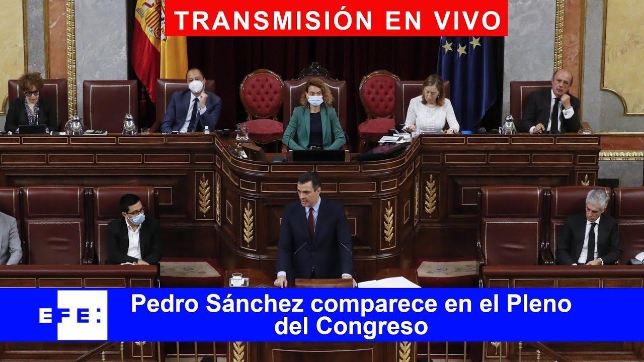 DIRECTO   Sánchez comparece en el último Pleno del Congreso del curso político