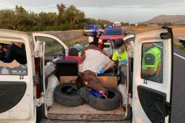 Un caballo muere en un aparatoso accidente de tráfico en la carretera de Muro