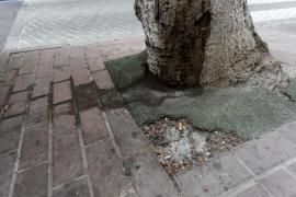 La falta de limpieza en la ciudad de Ibiza, en imágenes (Fotos: Daniel Espinosa).