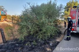 Los bomberos sofocan un incendio de rastrojos en Marratxí