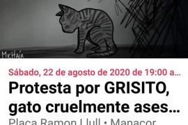 Protesta por el asesinato del gato Grisito en Manacor