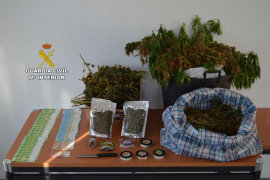 La Guardia Civil desactiva un grupo de venta de marihuana a turistas en Magaluf y Santa Ponça