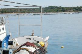 El pleno se ratifica contra la instalación de una piscifactoría en Portocolom