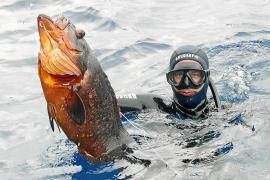 El Govern cobrará por practicar el buceo y la pesca submarina el próximo año