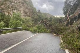 Las tormentas dejan sin electricidad a varias localidades de la Serra