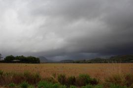 Importantes pérdidas en las cosechas de Mallorca tras la lluvia de granizo