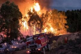 Estabilizado el incendio de Huelva tras arrasar más de 10.000 hectáreas