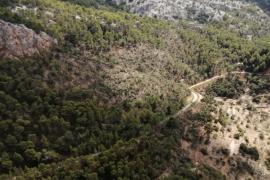 Los efectos de la tormenta en Mallorca, desde el aire