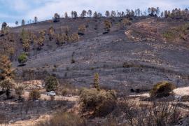 El incendio de la sierra de Huelva ha calcinado más de 12.000 hectáreas