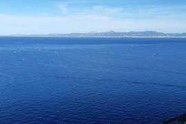 La fiebre del 'raor' 'corre' por la Bahía de Palma