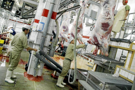 Cort y el Govern darán 355.000 euros a la empresa que gestione el matadero