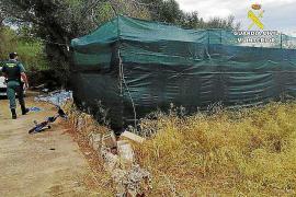Detenido un hombre de 33 años por cultivar marihuana en Portocolom
