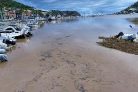 El Port d'Andratx, teñido de marrón