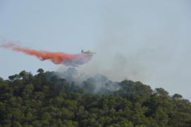 Siete medios aéreos combaten un nuevo incendio forestal en Sant Salvador