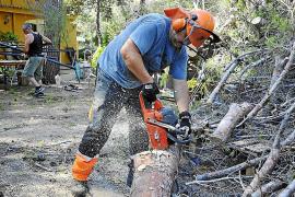 Medi Ambient inicia el lunes la recuperación de las zonas afectadas por el 'cap de fibló'