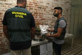 La Guardia Civil de Palma interviene por primera vez un kit de cultivo exprés de 'maría'