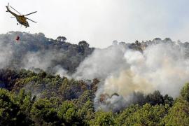 Un rebrote en el fuego de Son Vida y un incendio en Orient activan las alarmas