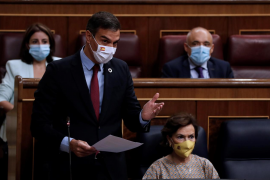 Sánchez pide a las instituciones unidad para mejorar la gestión de pandemia